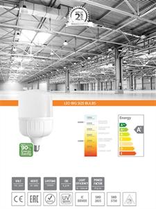 LED LAMPS - 12